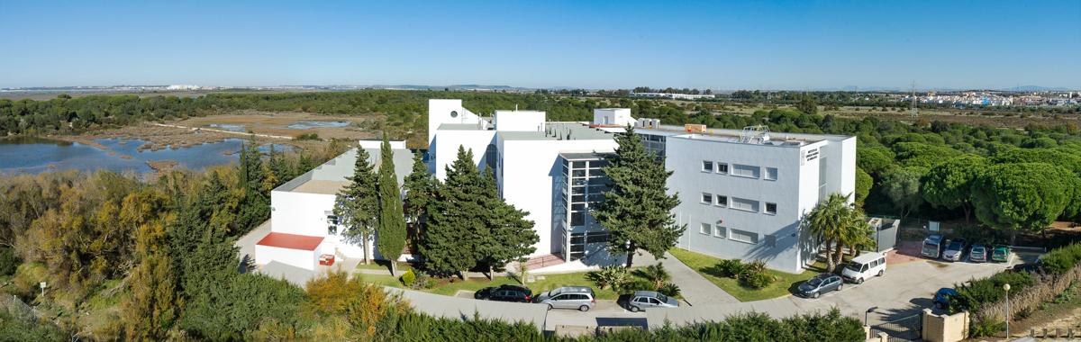 Instituto de ciencias Marinas de Andalucía (ICMAN)
